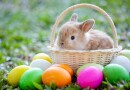 The spiritual sense of EASTER holiday